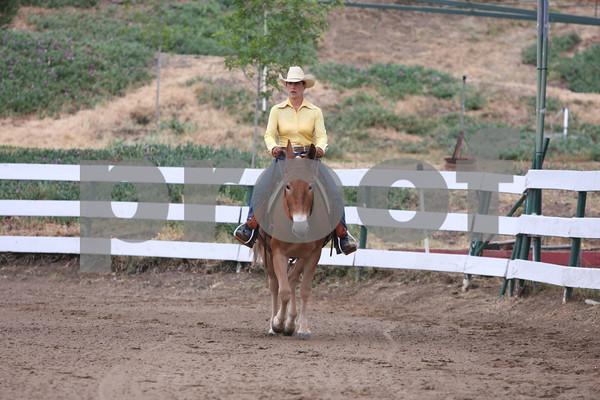 Cowboy Up Events